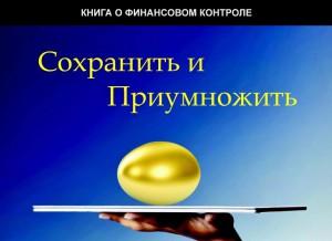 Книга о финансовом контроле.